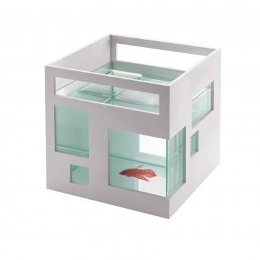 Aquarium maison d'architecte pour poisson blanc