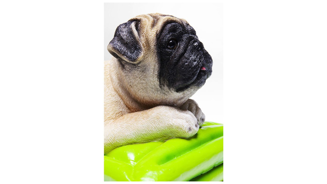 Tirelire Cher Chien Relax Mops Pas Carlin bf6gyY7