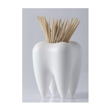Distributeur de cure dents Pick a Tooth blanc